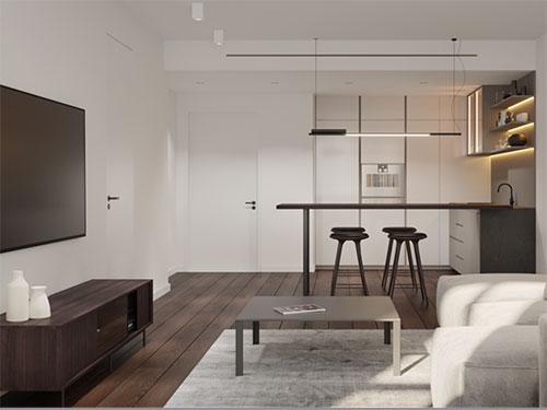 apartment-tc-home